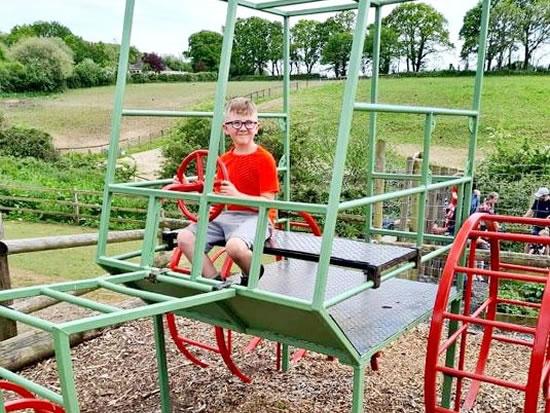 Dorset Heavy Horse Farm Park - Children riding Go Karts