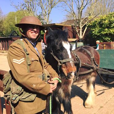 Dorset Heavy Horse Farm Park - Turkey