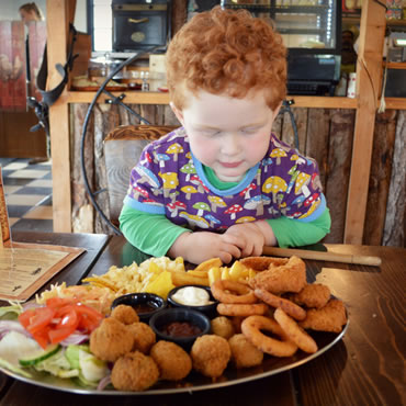 Dorset Heavy Horse Farm Park - Child looking at food platter