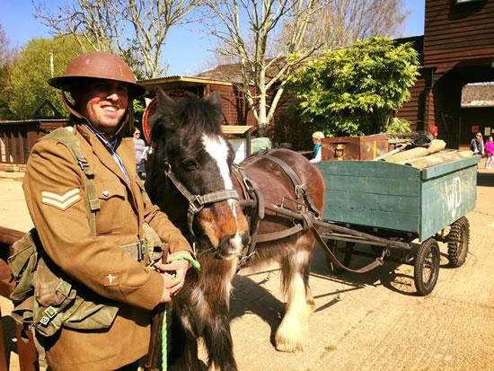 Dorset Heavy Horse Farm Park - Child riding the zip wire