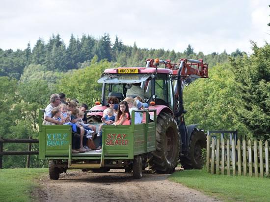 Dorset Heavy Horse Farm Park - Tractor Rides